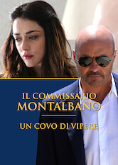 Search netflix Montalbano: A Nest of Vipers